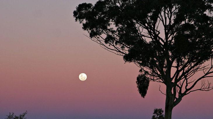 「なぜ月は満ち欠けするのか?」満月・三日月 様々な姿を見せる月。また月食との違いは?