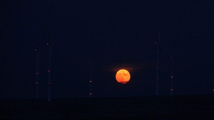 【スーパームーン】月が大きく見える理由と赤く見える現象を分かりやすく解説